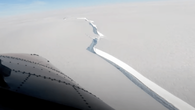 Photo of Un iceberg de peste 1,2 km2 s-a desprins de Antarctica